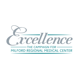 Excellence Campaign Logo